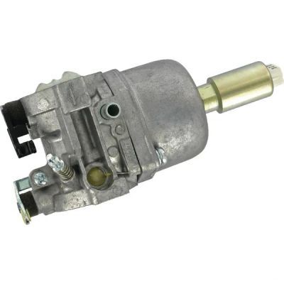 Carburator Briggs & Stratton OEM 799727