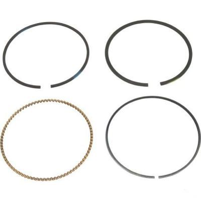 Set segmenți Briggs & Stratton OEM 499604,  V-Twin